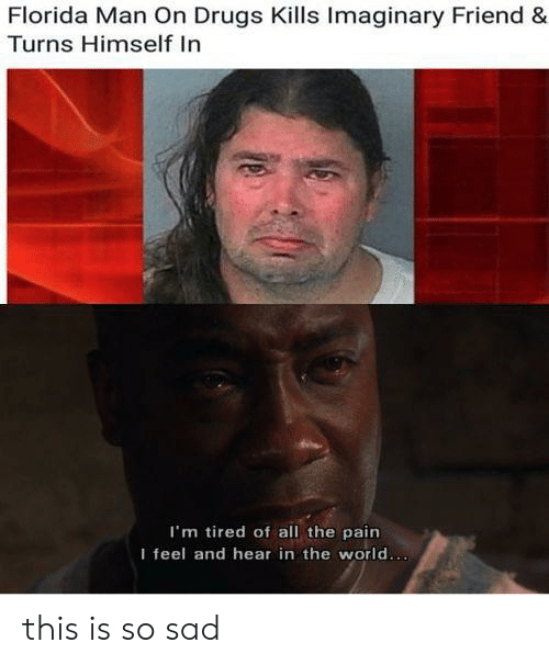 This Is So Sad: Florida Man On Drugs Kills Imaginary Friend &  Turns Himself In  I'm tired of all the pain  I feel and hear in the world... this is so sad