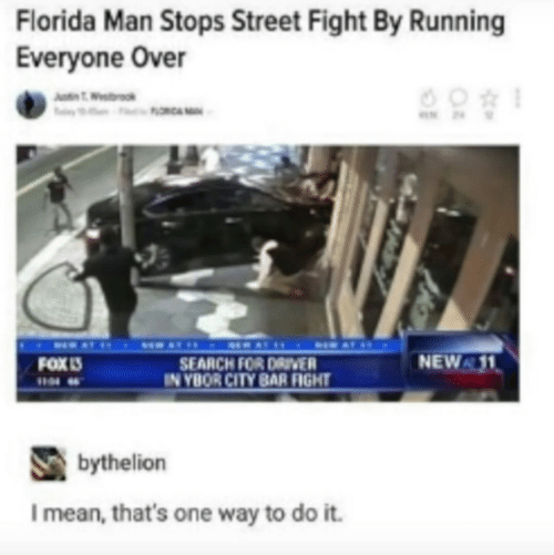 Florida Man, Florida, and Mean: Florida Man Stops Street Fight By Running  Everyone Over  NEW 11  FOX เร  SEARCH FOR DAIVER  N YBOR CITY BAR FIGHT  bythelion  I mean, that's one way to do it.