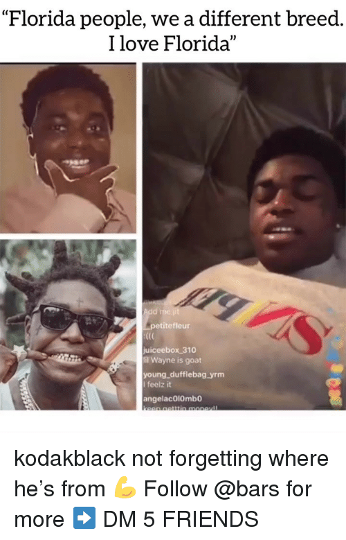 """Friends, Love, and Memes: """"Florida people, we a different breed.  I love Florida  petitefleur  juiceebox 310  fil Wayne is goat  young dufflebag yrm  I feelz it  angelacO10mbo kodakblack not forgetting where he's from 💪 Follow @bars for more ➡️ DM 5 FRIENDS"""