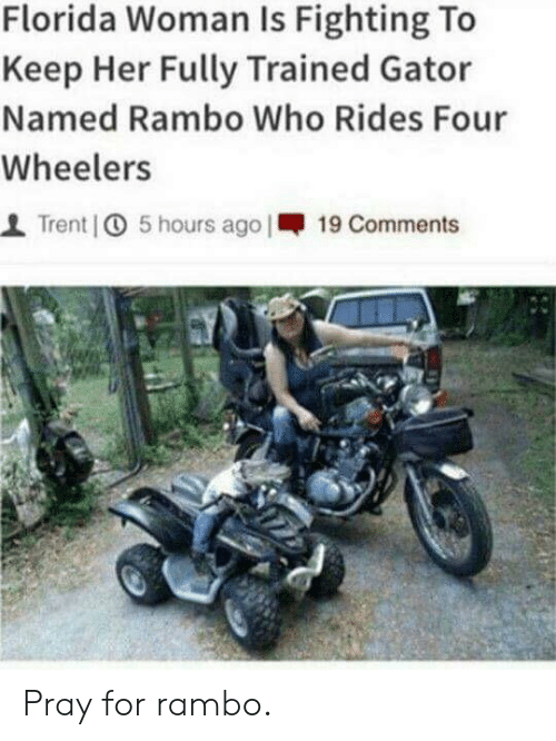 Rambo: Florida Woman Is Fighting To  Keep Her Fully Trained Gator  Named Rambo Who Rides Four  Wheelers  1 Trent | 5 hours ago I-19 Comments Pray for rambo.