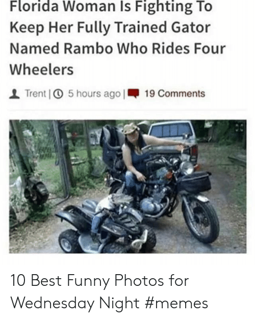 Rambo: Florida Woman Is Fighting To  Keep Her Fully Trained Gator  Named Rambo Who Rides Four  Wheelers  Trent 5 hours ago |19 Comments 10 Best Funny Photos for Wednesday Night #memes