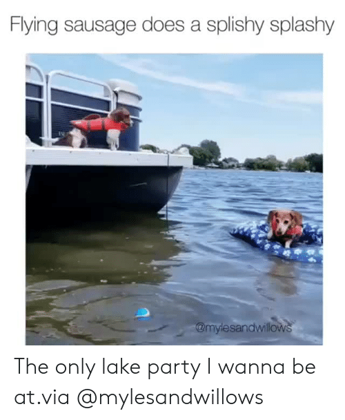Instagram, Party, and Target: Flying sausage does a splishy splashy  @mylesandwillows The only lake party I wanna be at.via @mylesandwillows