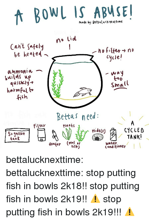 Heated: fnade by gettalucknettime  no Lid  Cant safelvy  be heated  Cycle!  ammonia ︷  quickly'  harmful h  fish  t*  Small  Bettas need  filter  Plants  5+gallon  tank  CYCLED  (real or  water  Conditioner bettalucknexttime:  bettalucknexttime:  stop putting fish in bowls 2k18!!  stop putting fish in bowls 2k19!!  ⚠️ stop putting fish in bowls 2k19!!! ⚠️