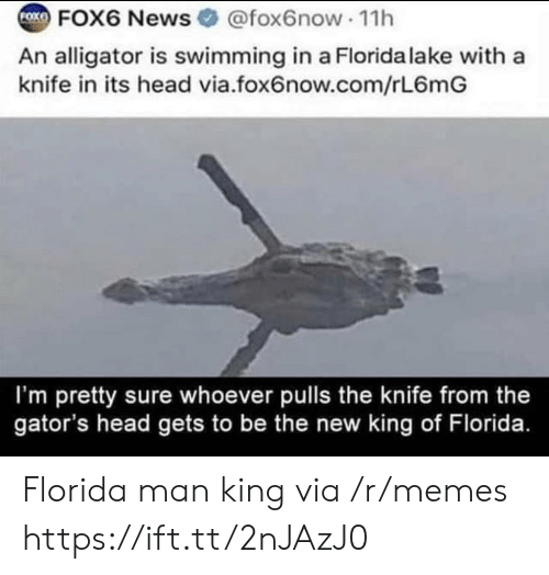 Alligator: FOK  FOX6 News @fox6now 11h  An alligator is swimming in a Florida lake with a  knife in its head via.fox6now.com/rL6mG  I'm pretty sure whoever pulls the knife from the  gator's head gets to be the new king of Florida. Florida man king via /r/memes https://ift.tt/2nJAzJ0
