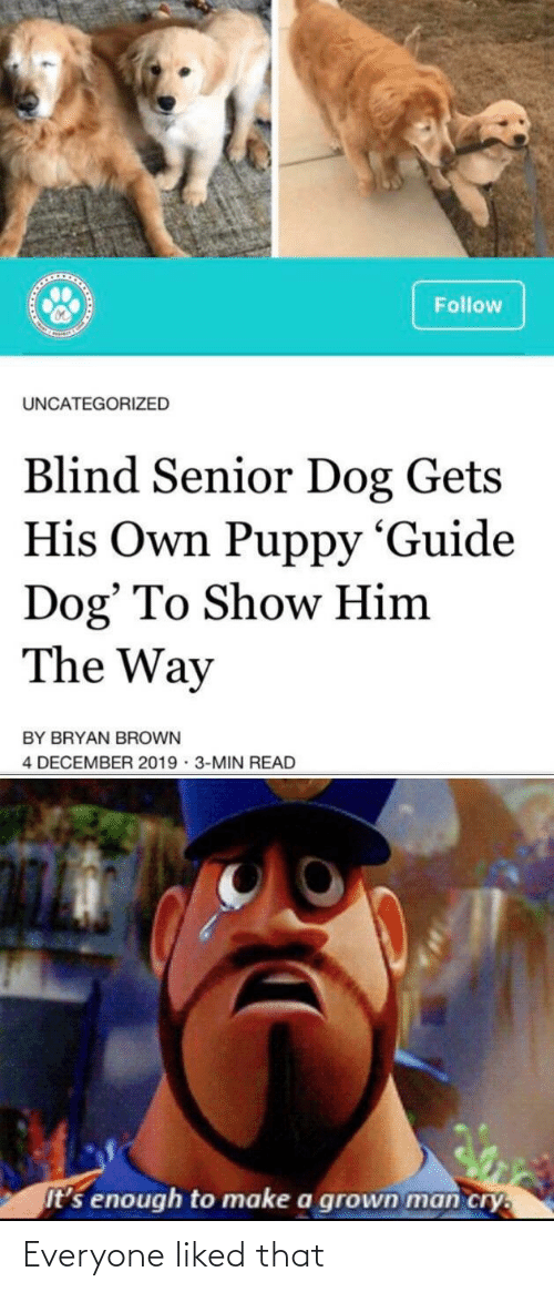 blind: Follow  UNCATEGORIZED  Blind Senior Dog Gets  His Own Puppy 'Guide  Dog' To Show Him  The Way  BY BRYAN BROWN  4 DECEMBER 2019 · 3-MIN READ  It's enough to make a grown man cry. Everyone liked that