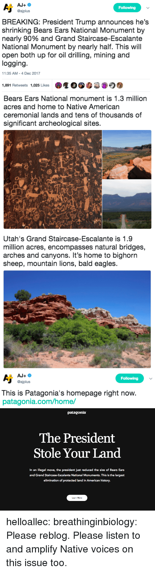 Philadelphia Eagles, Native American, and Target: Following  @ajplus  BREAKING: President Trump announces he's  shrinking Bears Ears National Monument by  nearly 90% and Grand Staircase-Escalante  National Monument by nearly half. This will  open both up for oil drilling, mining and  logging  11:35 AM-4 Dec 2017  1,891 Retweets 1,025 Likes   Bears Ears National monument is 1.3 million  acres and home to Native American  ceremonial lands and tens of thousands of  significant archeological sites.  sh   Utah's Grand Staircase-Escalante is 1.9  million acres, encompasses natural bridges,  arches and canyons. It's home to bighorn  sheep, mountain lions, bald eagles   Following  @ajplus  This is Patagonia's homepage right now  patagonia.com/home/   patagonia  The President  Stole Your Land  In an illegal move, the president just reduced the size of Bears Ears  and Grand Staircase-Escalante National Monuments. This is the largest  elimination of protected land in American history.  Learn More helloallec: breathinginbiology: Please reblog.  Please listen to and amplify Native voices on this issue too.