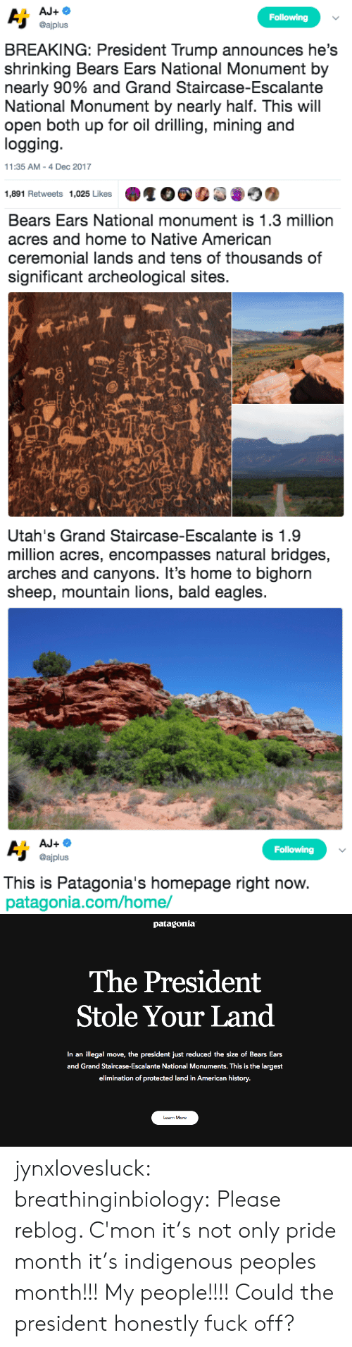 bald: Following  @ajplus  BREAKING: President Trump announces he's  shrinking Bears Ears National Monument by  nearly 90% and Grand Staircase-Escalante  National Monument by nearly half. This will  open both up for oil drilling, mining and  logging  11:35 AM-4 Dec 2017  1,891 Retweets 1,025 Likes   Bears Ears National monument is 1.3 million  acres and home to Native American  ceremonial lands and tens of thousands of  significant archeological sites.  sh   Utah's Grand Staircase-Escalante is 1.9  million acres, encompasses natural bridges,  arches and canyons. It's home to bighorn  sheep, mountain lions, bald eagles   Following  @ajplus  This is Patagonia's homepage right now  patagonia.com/home/   patagonia  The President  Stole Your Land  In an illegal move, the president just reduced the size of Bears Ears  and Grand Staircase-Escalante National Monuments. This is the largest  elimination of protected land in American history.  Learn More jynxlovesluck:  breathinginbiology: Please reblog.   C'mon it's not only pride month it's indigenous peoples month!!! My people!!!! Could the president honestly fuck off?