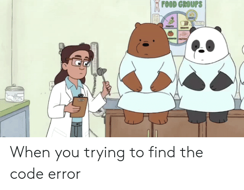 Food, Code, and The Code: FOOD GROUPS When you trying to find the code error