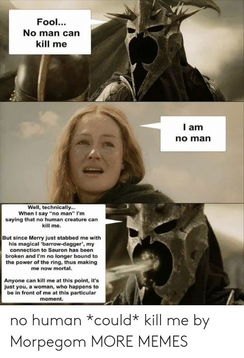 """Dank, Memes, and Target: Fool.  No man can  kill me  I am  no marn  Well, technically...  When I say """"no man"""" I'm  saying that no human creature can  kill me.  But since Merry just stabbed me with  his magical 'barrow-dagger, my  connection to Sauron has been  broken and I'm no longer bound to  the power of the ring, thus making  me now mortal  Anyone can kill me at this point, it's  just you, a woman, who happens to  be in front of me at this particular  moment. no human *could* kill me by Morpegom MORE MEMES"""