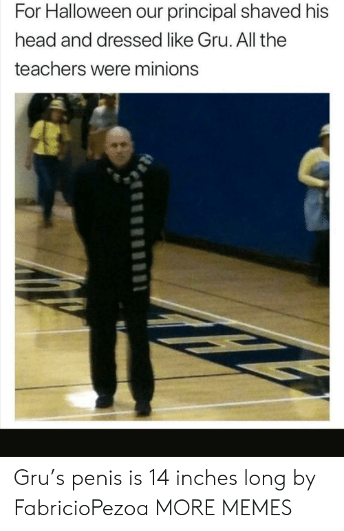 Gru: For Halloween our principal shaved his  head and dressed like Gru. All the  teachers were minions Gru's penis is 14 inches long by FabricioPezoa MORE MEMES