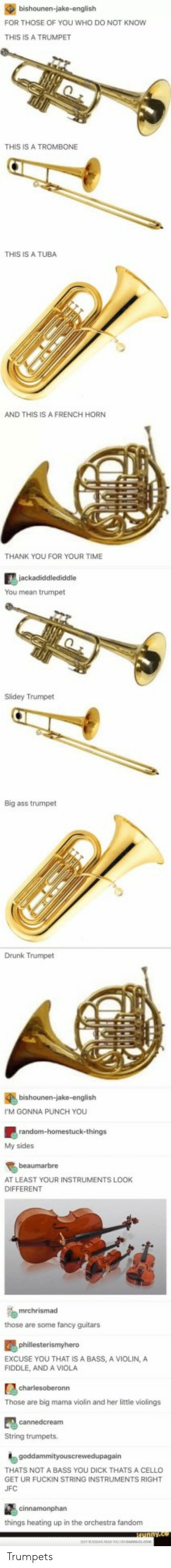 viola: FOR THOSE OF YOU WHO DO NOT KNOW  THIS IS A TRUMPET  THIS IS A TROMBONE  THIS IS A TUBA  AND THIS IS A FRENCH HORN  THANK YOU FOR YOUR TIME  You mean trumpet  Slidey Trumpet  Big ass trumpet  Drunk Trumpet  bishounen-jake-english  M GONNA PUNCH YOU  My sides  beaumarbre  AT LEAST YOUR INSTRUMENTS LOOK  DIFFERENT  those are some fancy guitars  EXCUSE YOU THAT IS A BASS, A VIOLIN, A  FIDDLE, AND A VIOLA  Those are big mama violin and her little violings  String trumpets.  THATS NOT A BASS YOU DICK THATS A CELLO  GET UR FUCKIN STRING INSTRUMENTS RIGHT  UFC  things heating up in the orchestra fandonm Trumpets
