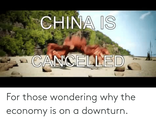 wondering: For those wondering why the economy is on a downturn.
