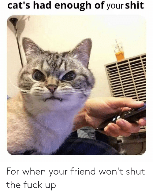 When Your Friend: For when your friend won't shut the fuck up