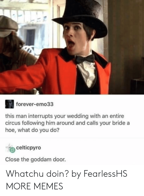 Dank, Hoe, and Memes: forever-emo33  this man interrupts your wedding with an entire  circus following him around and calls your bride a  hoe, what do you do?  celticpyro  Close the goddam door. Whatchu doin? by FearlessHS MORE MEMES