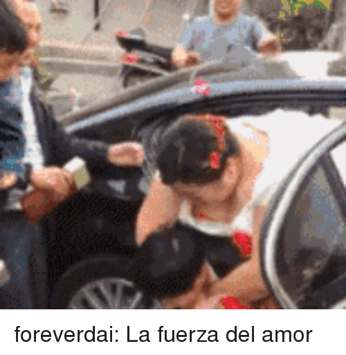 Tumblr, Blog, and Http: foreverdai:  La fuerza del amor