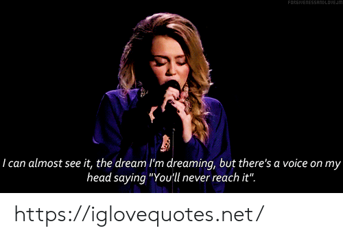 "the dream: FORGIUENESSANDLOUEJM  29  I can almost see it, the dream I'm dreaming, but there's a voice on my  head saying ""You'll never reach it"". https://iglovequotes.net/"