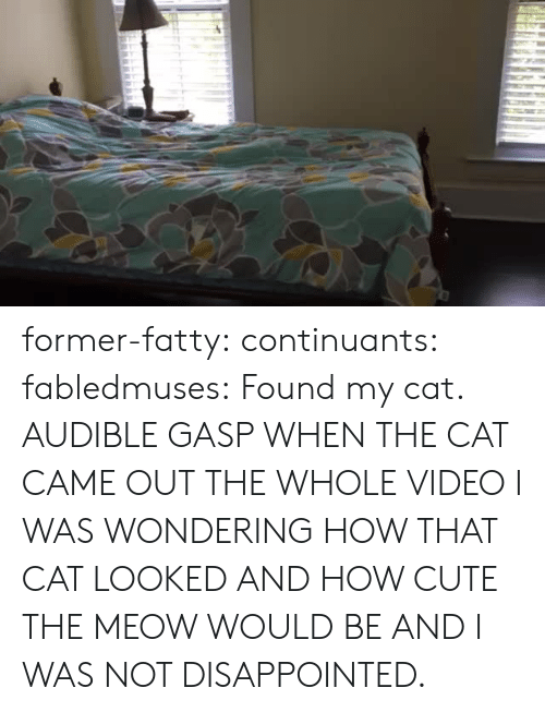 Audible: former-fatty: continuants:  fabledmuses:  Found my cat.  AUDIBLE GASP WHEN THE CAT CAME OUT  THE WHOLE VIDEO I WAS WONDERING HOW THAT CAT LOOKED AND HOW CUTE THE MEOW WOULD BE AND I WAS NOT DISAPPOINTED.