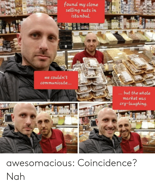 Tumblr, Blog, and Istanbul: found my clone  selling nuts in  istanbul.  we couldn't  communicate...  ...but the whole  market was  cry-laughing.  DOG  DOG awesomacious:  Coincidence? Nah