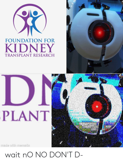 kidney transplant: FOUNDATION FOR  KIDNEY  TRANSPLANT RESEARCH  DM  PLANT  made with mematic wait nO NO DON'T D-