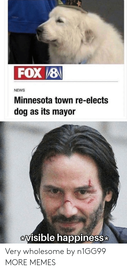 Dank, Memes, and News: FOX/8  NEWS  Minnesota town re-elects  dog as its mayor  visible happiness Very wholesome by n1GG99 MORE MEMES