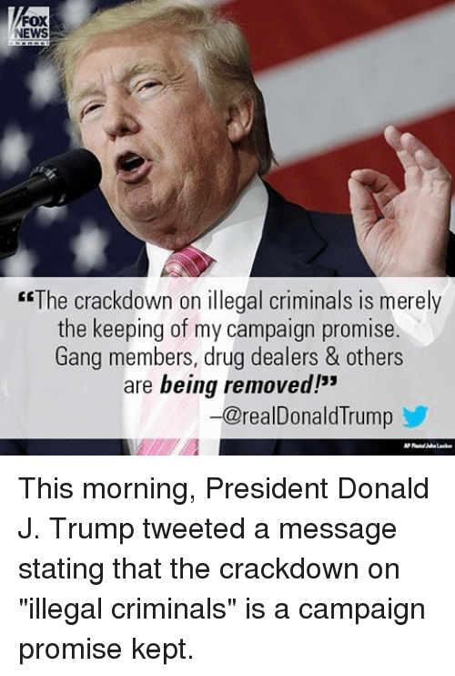 """Criminations: FOX  EWS  """"The crackdown on illegal criminals is merely  the keeping of my campaign promise.  Gang members, drug dealers & others  are being removed!""""  -a realDonald lrump This morning, President Donald J. Trump tweeted a message stating that the crackdown on """"illegal criminals"""" is a campaign promise kept."""