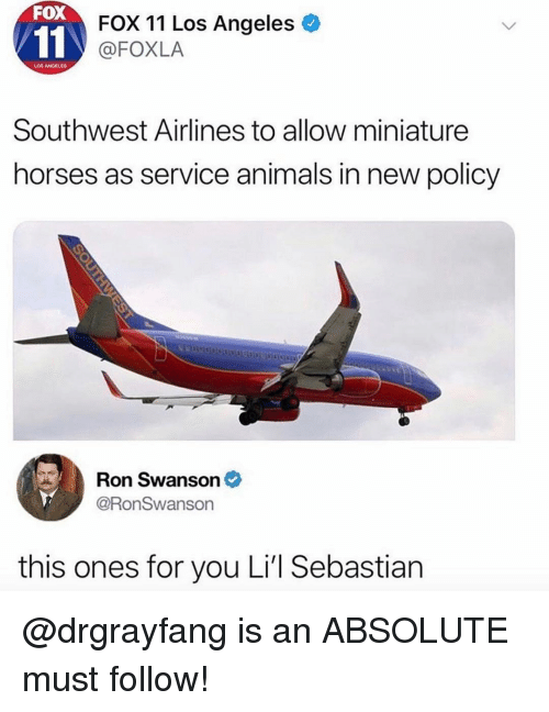 swanson: FOX  FOX 11 Los Angeles  @FOXLA  LOS ANGELES  Southwest Airlines to allow miniature  horses as service animals in new policy  Ron Swanson  @RonSwanson  this ones for you Li'l Sebastian @drgrayfang is an ABSOLUTE must follow!
