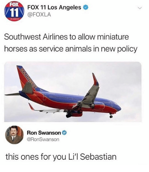 swanson: FOX  FOX 11 Los Angeles  @FOXLA  Southwest Airlines to allow miniature  horses as service animals in new policy  Ron Swanson  @RonSwanson  this ones for you Li'l Sebastian