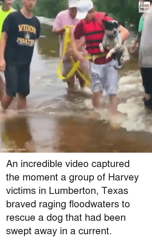 momentous: FOX  NEWS  Kavan Wise via Storyful An incredible video captured the moment a group of Harvey victims in Lumberton, Texas braved raging floodwaters to rescue a dog that had been swept away in a current.