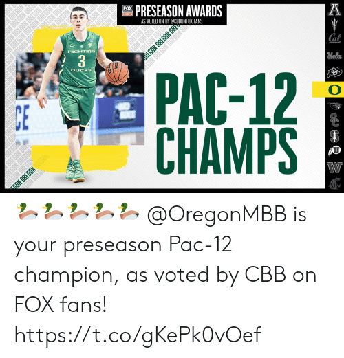 Memes, Ducks, and Oregon: FOX  PRESEASON AWARDS  HOOPS  AS VOTED ON BY @CBBONFOX FANS  A  FIGHTING  PAC-12  CHAMPS  DUCKS  Cal  Ucla  О  UREGO  ORE  OREGON  ON OREGON  NOON  O NG  REGO  REGON  NC  REGON OREGON ORE  UN UREGUN 🦆🦆🦆🦆🦆  @OregonMBB is your preseason Pac-12 champion, as voted by CBB on FOX fans! https://t.co/gKePk0vOef