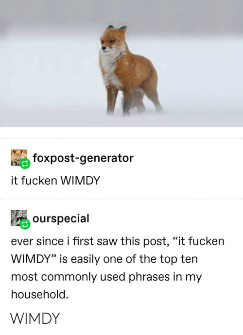 "top ten: foxpost-generator  it fucken WIMDY  ourspecial  ever since i first saw this post, ""it fucken  WIMDY"" is easily one of the top ten  most commonly used phrases in my  household. WIMDY"