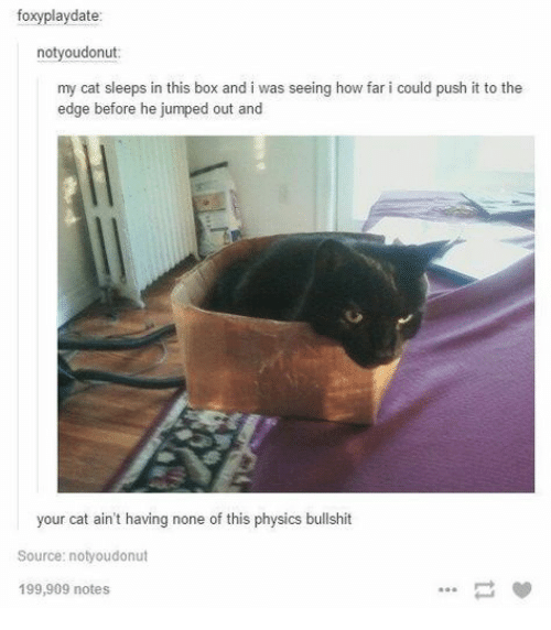 Physics, Bullshit, and Jumped: foxyplaydate:  notyoudonut  my cat sleeps in this box and i was seeing how far i could push it to the  edge before he jumped out and  your cat ain't having none of this physics bullshit  Source: notyoudonut  199,909 notes