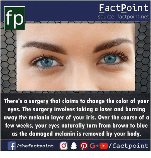 Iris: fp  FactPoint  source: factpoint.net  There's a surgery that claims to change the color of your  eyes. The surgery involves taking a laser and burning  away the melanin layer of your iris. Over the course of a  few weeks, your eyes naturally turn from brown to blue  as the damaged melanin is removed by your body.
