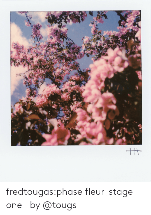 Instagram, Tumblr, and Blog: fredtougas:phase fleur_stage one  by @tougs