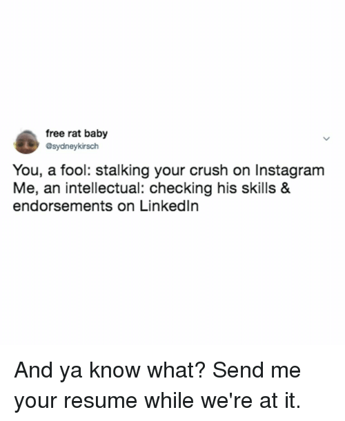 Crush, Instagram, and Stalking: free rat baby  sydneykirsch  You, a fool: stalking your crush on Instagram  Me, an intellectual: checking his skills &  endorsements on Linkedln And ya know what? Send me your resume while we're at it.