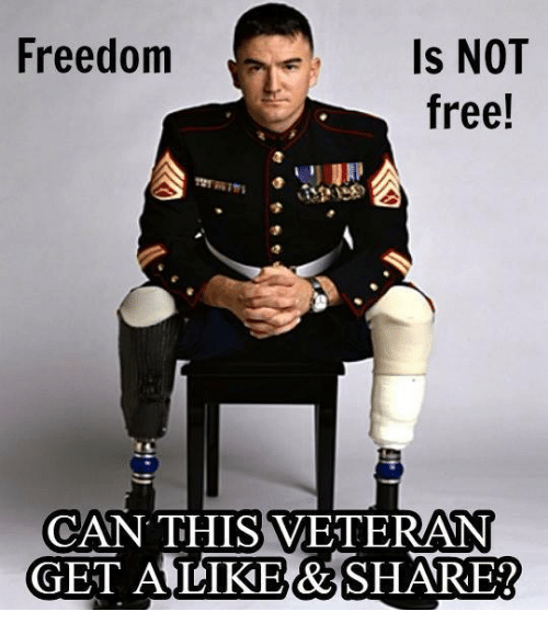 Memes, Free, and Freedom: Freedom  Is NOT  free!  CAN THIS VETERAN  GET AULIKE&SHARE