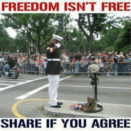 if you agree: FREEDOM ISN'T FREE  SHARE IF YOU AGREE