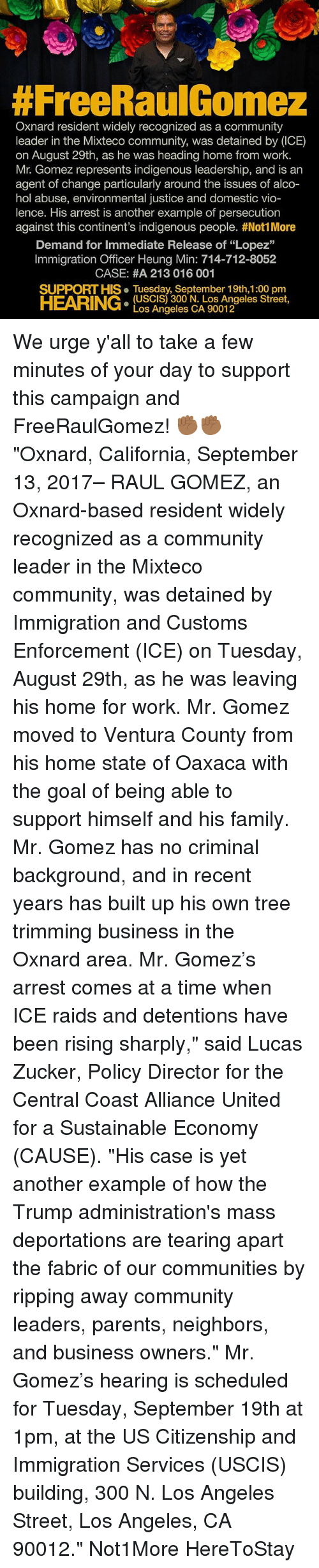 """vio:  #FreeRaulGomez  Oxnard resident widely recognized as a community  leader in the Mixteco community, was detained by (ICE)  on August 29th, as he was heading home from work.  Mr. Gomez represents indigenous leadership, and is an  agent of change particularly around the issues of alco-  hol abuse, environmental justice and domestic vio-  lence. His arrest is another example of persecution  against this continent's indigenous people. #Not! More  Demand for Immediate Release of """"Lopez""""  Immigration Officer Heung Min: 714-712-8052  CASE: #A 213 016 001  SUPPORT HIS. Tuesday, September 19th,1:00 pm  HEARING:  (USCIS) 300 N. Los Angeles Street,  Los Angeles CA 90012 We urge y'all to take a few minutes of your day to support this campaign and FreeRaulGomez! ✊🏾✊🏾 """"Oxnard, California, September 13, 2017– RAUL GOMEZ, an Oxnard-based resident widely recognized as a community leader in the Mixteco community, was detained by Immigration and Customs Enforcement (ICE) on Tuesday, August 29th, as he was leaving his home for work. Mr. Gomez moved to Ventura County from his home state of Oaxaca with the goal of being able to support himself and his family. Mr. Gomez has no criminal background, and in recent years has built up his own tree trimming business in the Oxnard area. Mr. Gomez's arrest comes at a time when ICE raids and detentions have been rising sharply,"""" said Lucas Zucker, Policy Director for the Central Coast Alliance United for a Sustainable Economy (CAUSE). """"His case is yet another example of how the Trump administration's mass deportations are tearing apart the fabric of our communities by ripping away community leaders, parents, neighbors, and business owners."""" Mr. Gomez's hearing is scheduled for Tuesday, September 19th at 1pm, at the US Citizenship and Immigration Services (USCIS) building, 300 N. Los Angeles Street, Los Angeles, CA 90012."""" Not1More HereToStay"""
