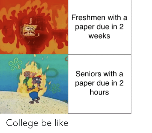 seniors: Freshmen with a  paper due in 2  weeks  Seniors with a  paper due in 2  hours  yeks College be like