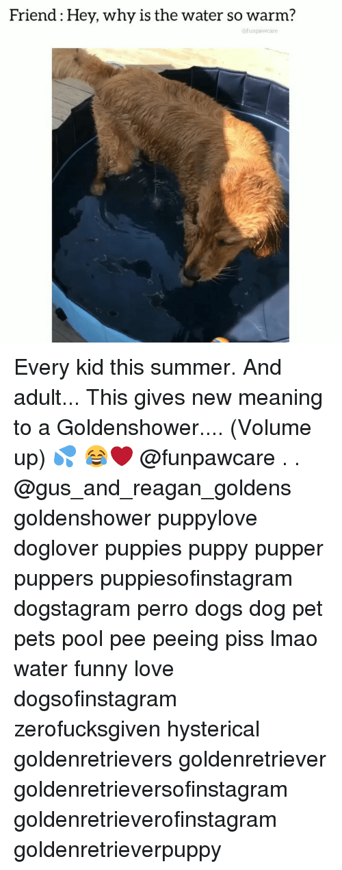 Volume Up: Friend: Hey, why is the water so warm?  @funpawcare Every kid this summer. And adult... This gives new meaning to a Goldenshower.... (Volume up) 💦 😂❤️ @funpawcare . . @gus_and_reagan_goldens goldenshower puppylove doglover puppies puppy pupper puppers puppiesofinstagram dogstagram perro dogs dog pet pets pool pee peeing piss lmao water funny love dogsofinstagram zerofucksgiven hysterical goldenretrievers goldenretriever goldenretrieversofinstagram goldenretrieverofinstagram goldenretrieverpuppy