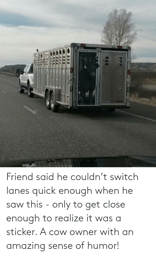 cow: Friend said he couldn't switch lanes quick enough when he saw this - only to get close enough to realize it was a sticker. A cow owner with an amazing sense of humor!