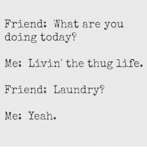 Laundry, Life, and Memes: Friend: What are you  doing today?  Me: Livin' the thug life.  Friend: Laundry?  Me: Yeah.
