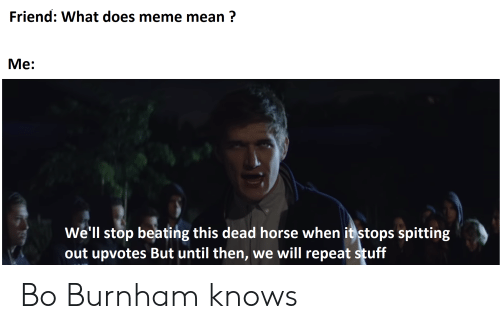Meme, Reddit, and Horse: Friend: What does meme mean?  Ме:  Well stop beating this dead horse when it stops spitting  out upvotes But until then, we will repeat stuff Bo Burnham knows