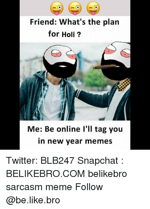 holi: Friend: What's the plan  for Holi?  Me: Be online l'll tag you  in new year memes Twitter: BLB247 Snapchat : BELIKEBRO.COM belikebro sarcasm meme Follow @be.like.bro