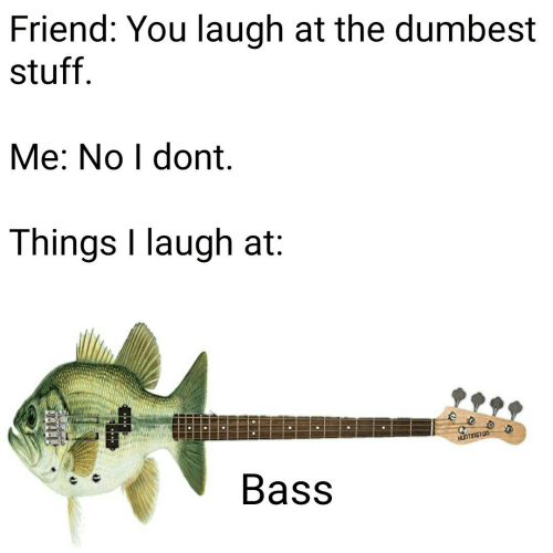 Stuff, Bass, and Friend: Friend: You laugh at the dumbest  stuff  Me: No I dont  Things I laugh at:  Bass