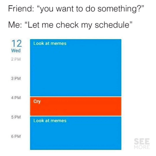 "Memes, Schedule, and Friend: Friend: ""you want to do something?""  Me: ""Let me check my schedule""  12  Look at memes  Wed  2 PM  3 PM  4 PM  Cry  5 PM  Look at memes  6 PM  SEE  MORE"