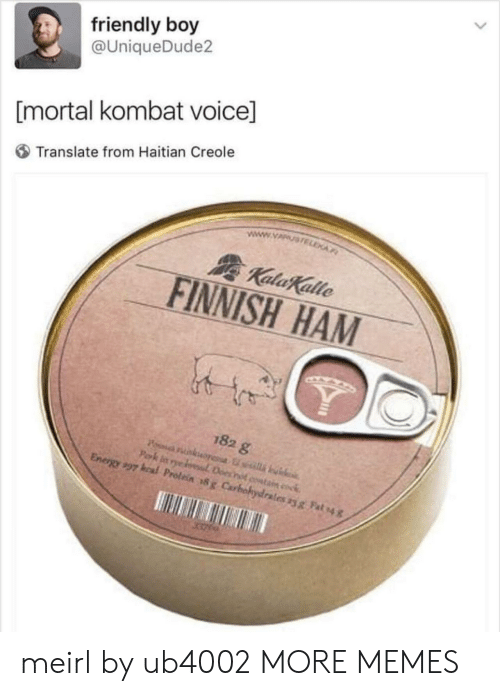 Mortal Kombat: friendly boy  @UniqueDude2  [mortal kombat voice]  Translate from Haitian Creole  FINNISH HAM  182 g  Energy,97 kal Prolein #x Carbohydrates yg Fah4 meirl by ub4002 MORE MEMES