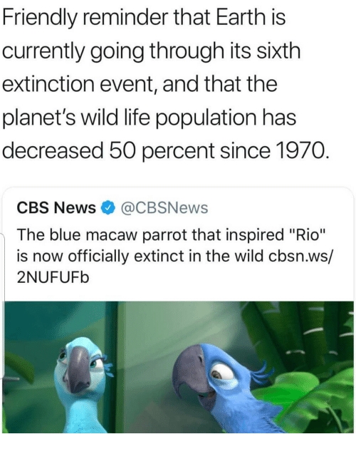 """Life, Memes, and News: Friendly reminder that Earth is  currently going through its sixth  extinction event, and that the  planet's wild life population has  decreased 50 percent since 1970  CBS News@CBSNews  The blue macaw parrot that inspired """"Rio""""  is now officially extinct in the wild cbsn.ws/  2NUFUFb"""
