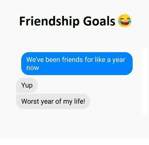 Friends, Goals, and Life: Friendship Goals  We've been friends for like a year  now  Yup  Worst year of my life!