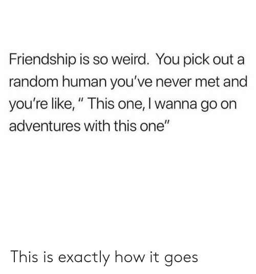 """Dank, Weird, and Friendship: Friendship is so weird. You pick out a  random human you've never met and  you're like,"""" This one, I wanna go on  adventures with this one"""" This is exactly how it goes"""