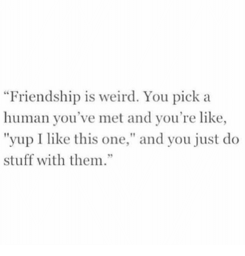 """Weird, Stuff, and Friendship: Friendship is weird. You pick a  human you've met and you're like,  """"yup I like this one,"""" and you just do  stuff with them.""""  92"""